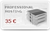 Professional Server web hosting